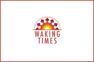 Flickr - Lock - lyudagreen