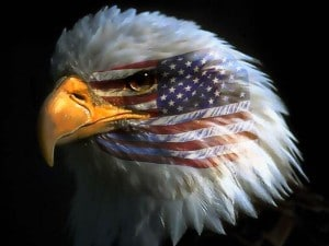 patriotism-flag-respect-devotion