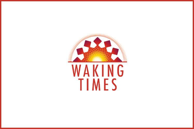 Planetary Consciousness