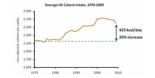11 Charts That Will Give You a Clear View of the Modern Diet