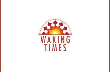 lies1-300x242