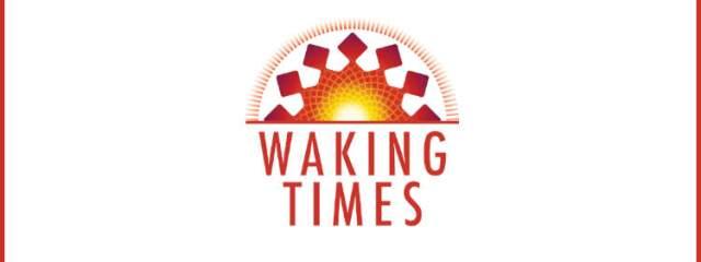 Dr Emoto Crystal 4