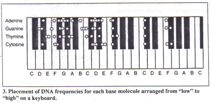 The A=432 Hz Frequency: DNA Tuning and the Bastardization