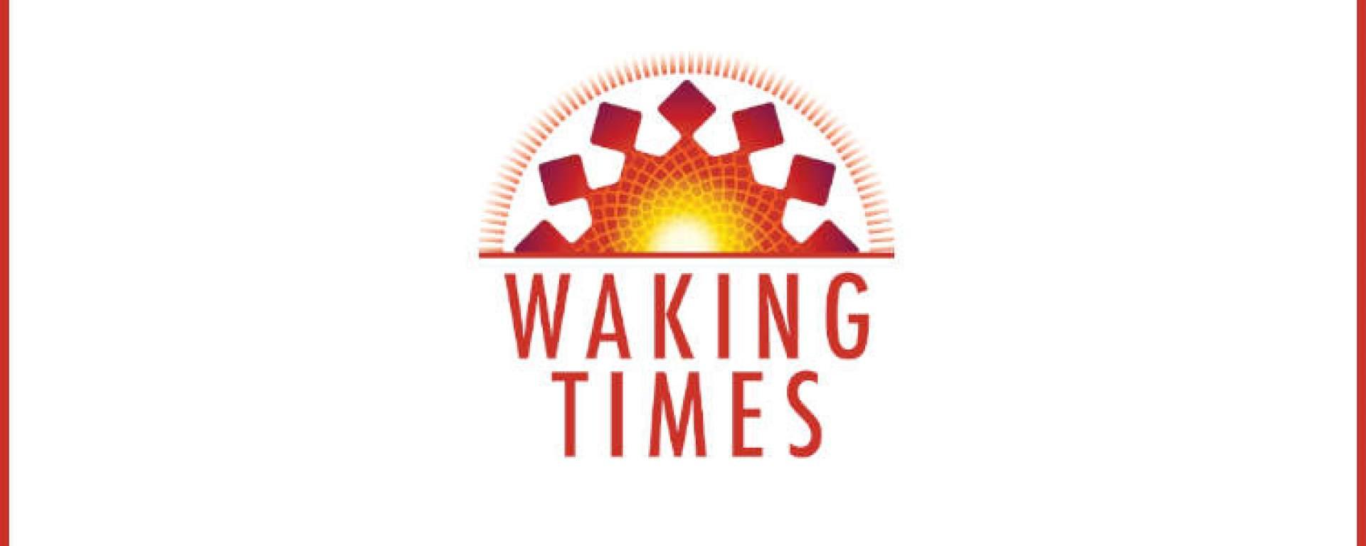 how many trees are cut down every year? – webinvestigator.kk