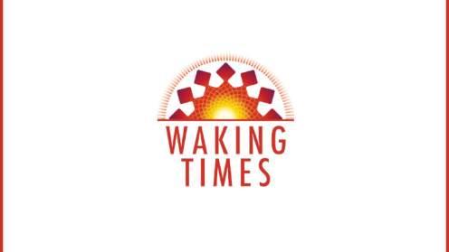 Multidimensional beings