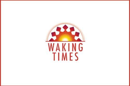 soul-model-3-level