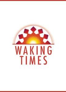 mao_zedong_voting