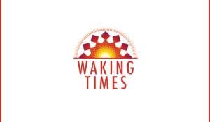 cbdistillery cbd products