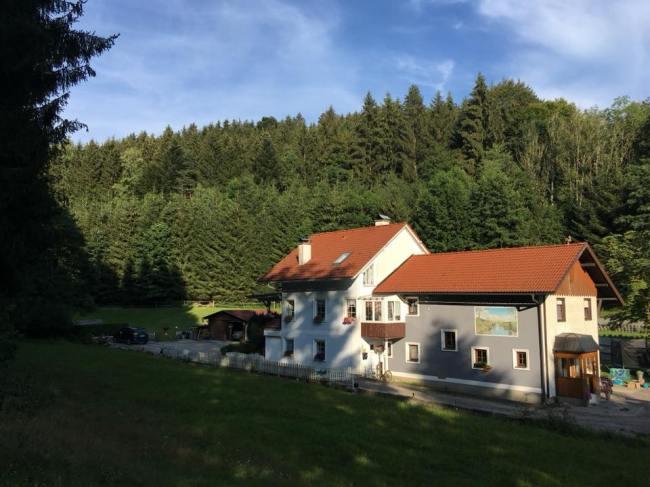 Wald Kobel // links FeWO // rechts Ferienhaus Sacherl
