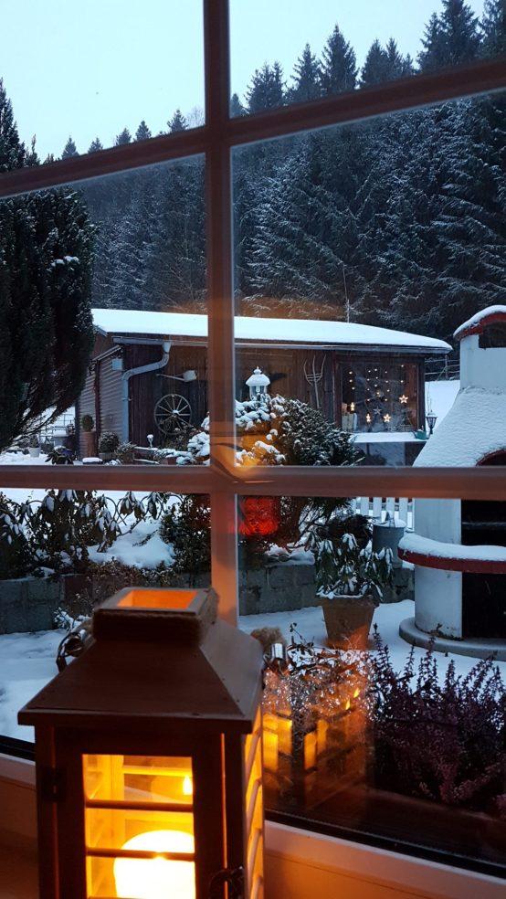 Ausblick vom Wohnzimmer Ferienwohnung Wald Kobel