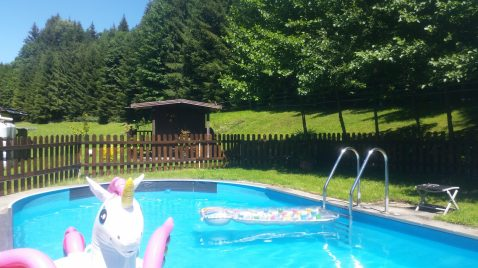 Wald Swimmingpool