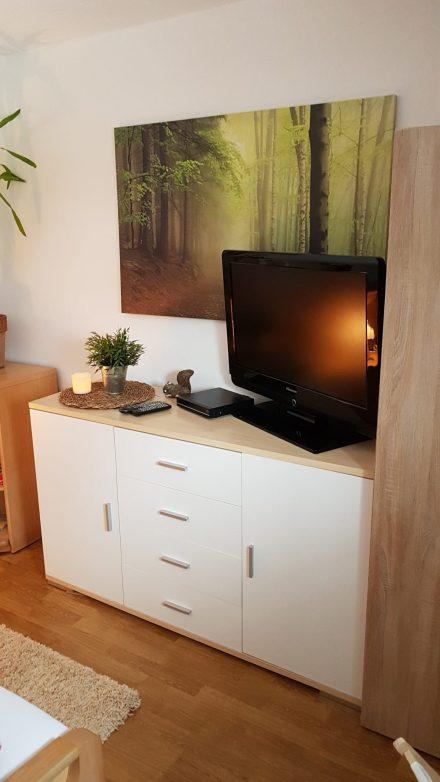 TV + DVD Player Schlafzimmer Ferienwohnung Wald Kobel