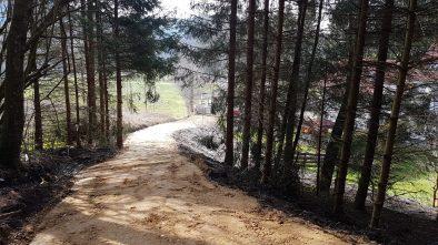 Privater kleiner Waldweg Ferienhaus Sacherl Wald Kobel