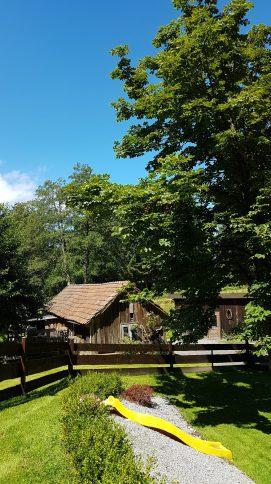 Garten Ferienhaus Sacherl Wald Kobel