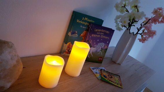 Kinderbücher Ferienhaus Sacherl Wald Kobel