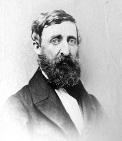 Henry David Thoreau | The Walden Woods Project