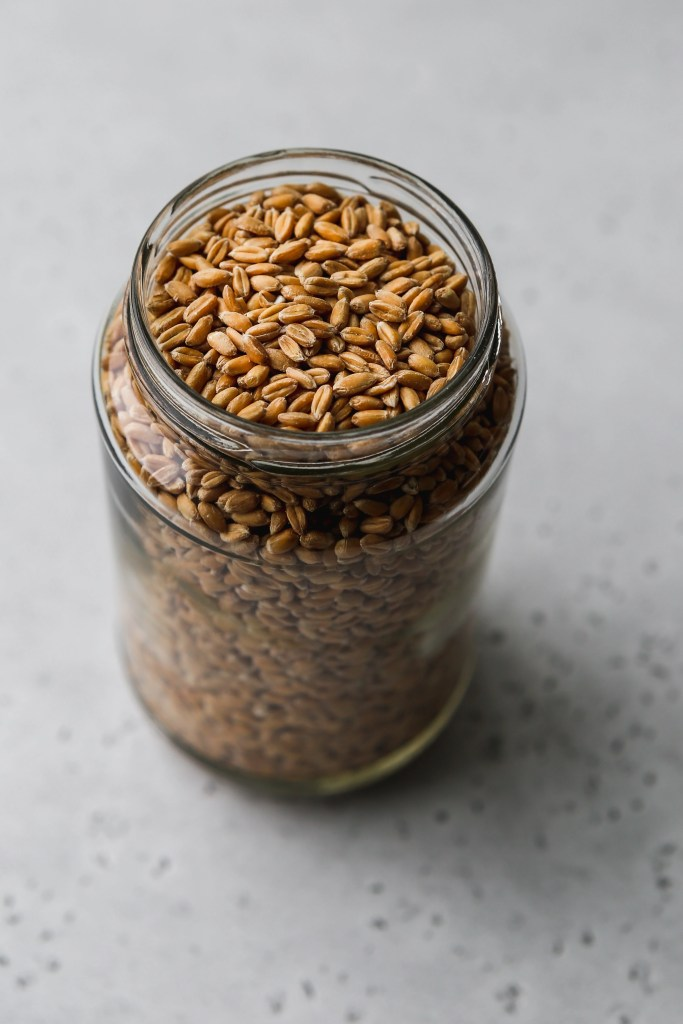 45 degree angle shot of dry farro grains in a glass jar