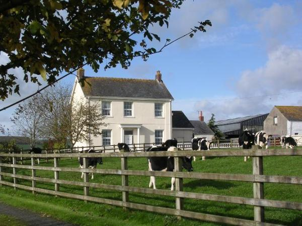 St Clears Farmhouse Bed and Breakfast Glascoed Farm BB