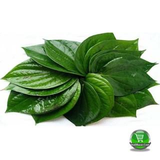 Rajshahir sweet pan 1/2 bira