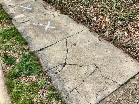 Jenkintown's sidewalk follies: Sidewalk Cracks on Rodman