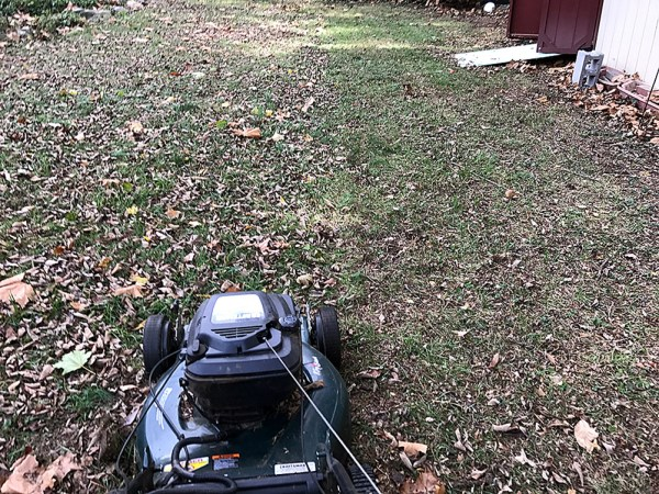 Jenkintown budgets $14,000 each year to remove nutrients from your yard
