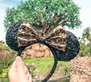 Animal Kingdom tree of life and ear band