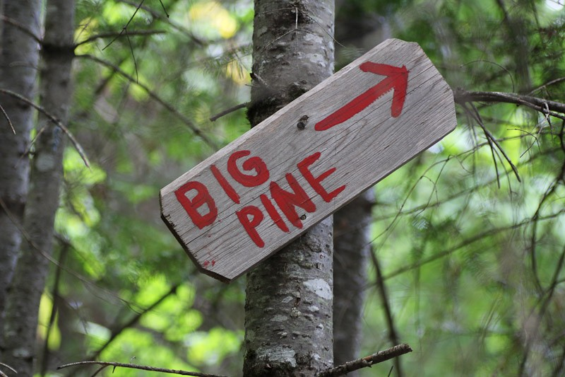 September On The Homestead Big Pine