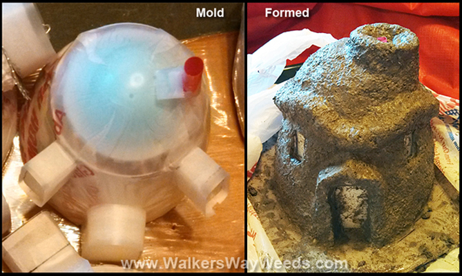 Angry house mold and curing