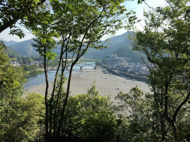 Kintai Bridge as seen through some trees from a higher elevation.