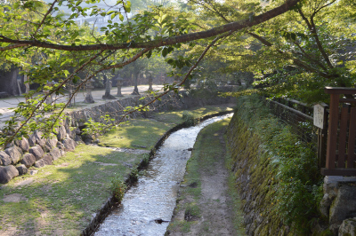 Miyajima Stream