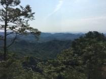 Three Peaks Side Tree View