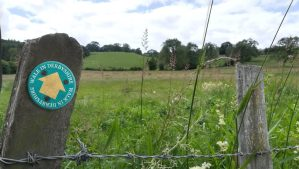 Walk In Derbyshire fingerpost