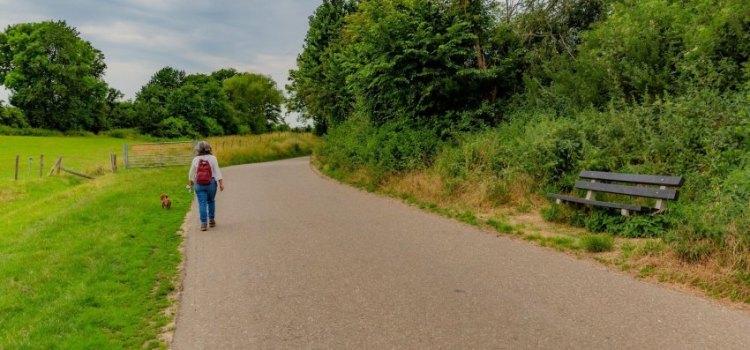 Aan welke kant van de weg kun je het beste lopen?