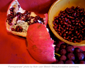 """A piece of pomegranate rind with seeds and piece of the outside rind are on a red tablecloth, next to a yellow bowl filled with pomegranate seeds.The caption reads """"Pomegranate"""" photo by flickr user Meesh Rheault/creative commons""""."""