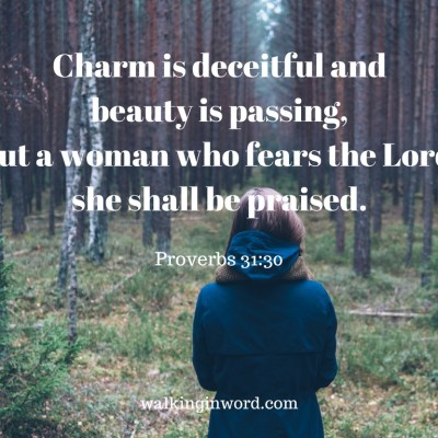 The Ideal Woman – Part 2