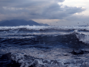seascape with mountains in background, Kaikoura New Zealand