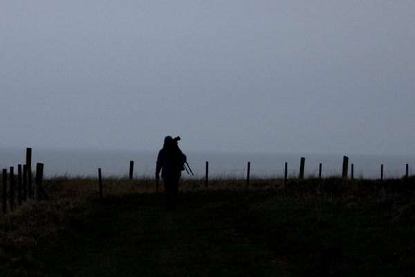 Bird watcher with telescope, Bempton Cliffs RSPB