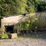 Flowering plants encircle bunker