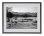 In Search of Greener Grass at Grasmere, Lake District Black Frame