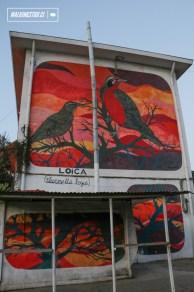 """""""Loicas"""" de Charquipunk - 2013"""
