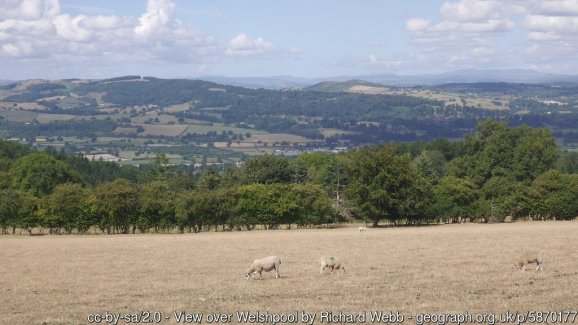 Offa's Dyke from Brompton Crossroads to Buttington Bridge