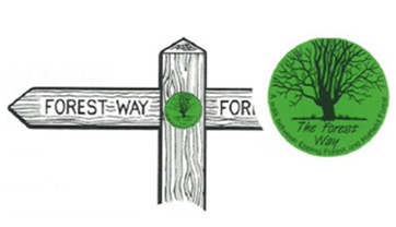 Walks And Walking - Essex Walks - The Forest Way