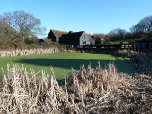 Walks And Walking - Essex Walks Epping Forest Walking Route - The Barn