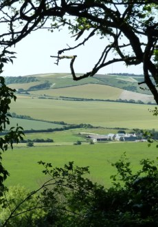 Walks And Walking - The Isle of Wight Walking Festival 2012 - Stunning Countryside Views