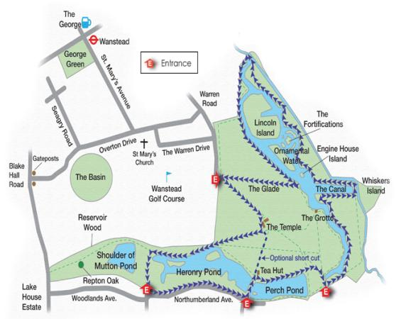 Walks And Walking - Epping Forest Walks - The Chestnut Trail Walking Route Wanstead Park