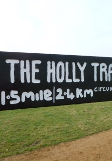 Walks And Walking - Essex Walks Epping Forest Holly Trail Walking Route - The Holly Trail Signpost
