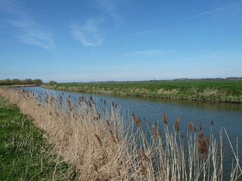 Walks And Walking - Kent Walks Sturry To Sandwich Walking Route - River Stour