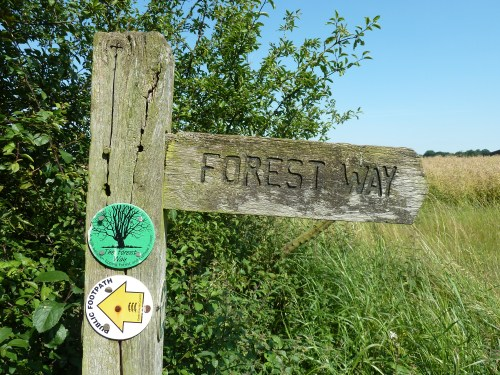 Walks And Walking - Essex Walks Epping Forest District Walking Route - The Forest Way Signpost