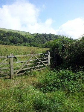 Walks And Walking - Kent Walks Folkestone White Horse Walking Route - Garden Of England