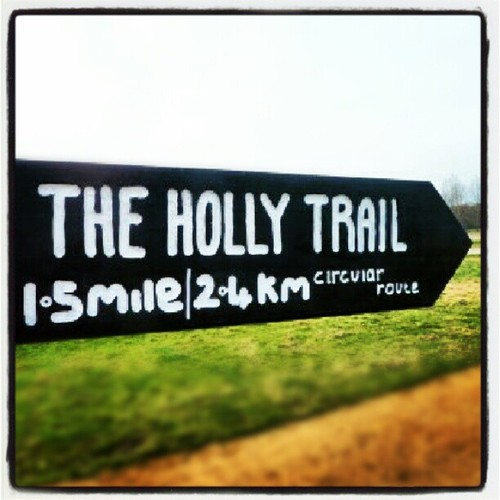 The Holly Trail Walk Epping Forest
